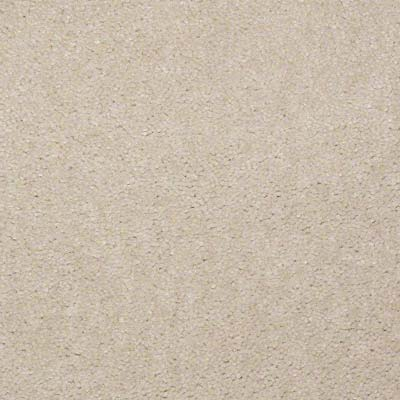 Linoleum City - plush carpet swatch